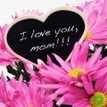 Unique Mother's Day Gifts